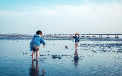Que faire avec ses enfants pendant l'été ?